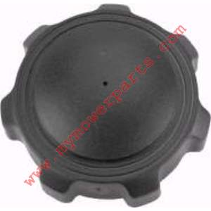 FUEL GAS  CAP